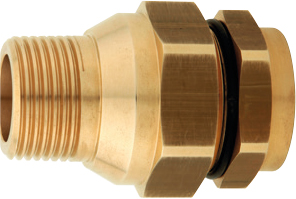 "PLT Gas Male Fitting DN40 x 2"" M"